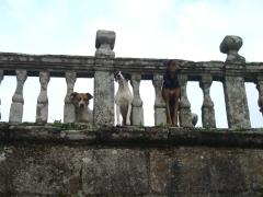 El Puente con sus guardianes