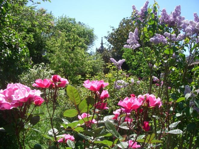 Jardín oloroso