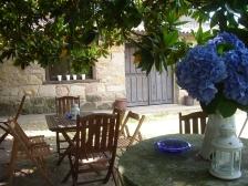 Terraza bajo los magnolios del Jardín